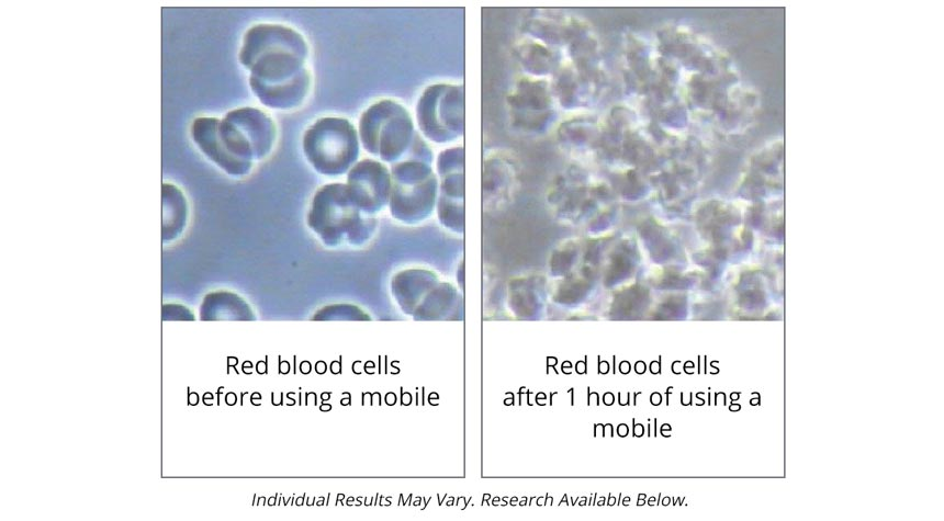 radiation effect on blood cell